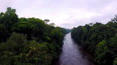 River in the rainforest. Camera moving down to the river Stock Footage
