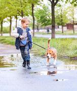 Boy walk with pet through the puddle after spring rain - stock photo
