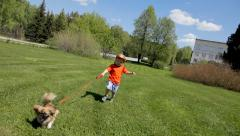 Little boy runs in a green field with his pet Pekingese. Stock Footage