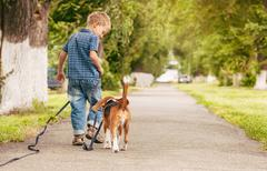 Little boy walking with his better friend - beagle puppy - stock photo