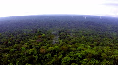 Rainforest Africa. The view from the helicopter. Flying over the jungle Stock Footage