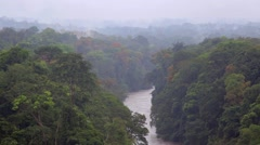 Nice view of the river in the tropical jungles of Africa Stock Footage