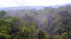 Fog over the tropical jungles of Africa. Equatorial Guinea Stock Footage