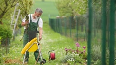 Senior gardener grinding branches of trees Stock Footage