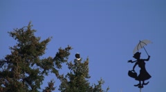 Bald eagle and weathervane Stock Footage