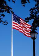 Park US Flag - stock photo
