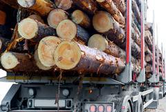 Timber truck Stock Photos