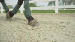 SLOW MOTION CLOSE UP: Dressage horse walking in sand arena Stock Footage