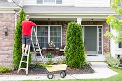 Yard work around the house trimming Thuja trees Stock Photos