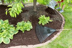 Man spreading mulch in the garden - stock photo