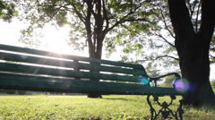 Dolly:Bench in an Urban Park at the sunlight footage Stock Footage