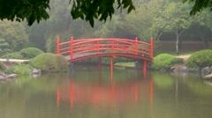 Japanese garden Toowoomba carnival flowers rain Stock Footage