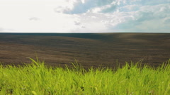 DOLLY MOTION: Black plowed and green fields under sky Stock Footage