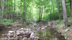 4k River Ilse stream tilt Ilsetal forest mountain range Harz Stock Footage