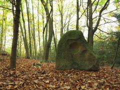 Menhir Stone Skull - stock photo