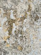 Rough moldy weathered peeling white paint texture. Stock Photos