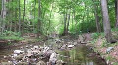 River Ilse stream tilt Ilsetal forest mountain range Harz Stock Footage