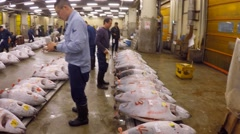 Tsukiji Tuna auction Stock Footage