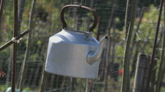 Kettle hanging in a vegetable garden Stock Footage