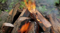Burning firewood in fire Stock Footage
