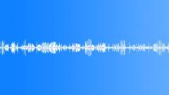 Paradise. Bird singing. - sound effect