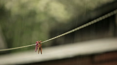 Clothespins in the rain Stock Footage