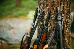 Soviet and German rifles of World War II - SVT 40 - Samozaryadna Stock Photos