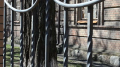 The forged lattice, fence - stock footage