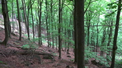 Mountain forest slope Ilsestein mountain range Harz Stock Footage
