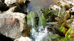 Stock Video Footage of Runoff water cascading onto rocks and seaweed