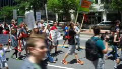 Protest against Monsanto and GMOs - stock footage