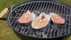 Grilled bell salmon on the grill with hot coals - stock footage