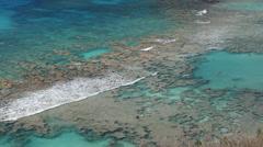 Hanauma Bay Snorkelers in the water - stock footage