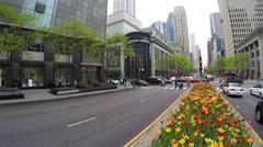 Tulips in Michigan Avenue, Chicago, Illinois Stock Footage