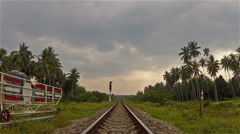 Railroad rails in the jungle Stock Footage