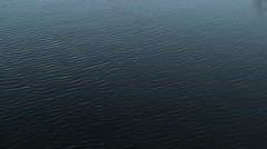 Clean lake water surface Stock Footage