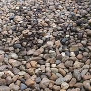Pebble stone texture background Kuvituskuvat