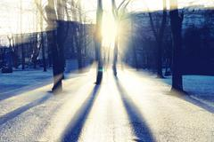 Sun through the trees in the park with shadows on the ice - stock photo