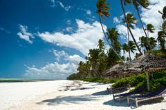 Trobical beach in Zanzibar Kuvituskuvat