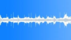Sunny Banhu (seamless loop 1) Stock Music