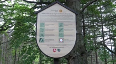 4k Mountain range Harz Ilsetal hiking info board Stock Footage