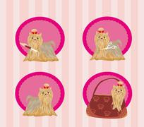 Yorkshire terrier red and black with elegant exhibition haircut - set - stock illustration