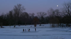 Ice skating in park by moonlight Stock Footage