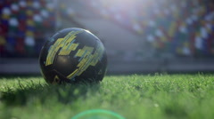 Slow Motion: Kicking A Ball Stock Footage
