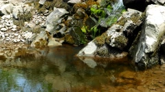 Water splattering over rocks into a tidal pool - stock footage