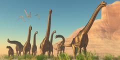 Brachisaurus Afternoon Stock Illustration