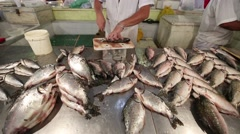 Fish market in Manaus , Amazonia Stock Footage