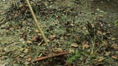 Raking leafs, close up, shallow DOF Stock Footage