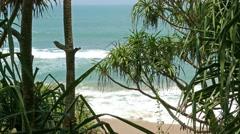 Ocean beach through coastal thickets 4k Stock Footage