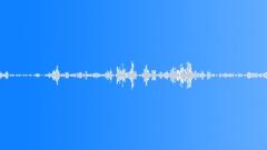 ukau0001 Birdsong in UK countryside - sound effect